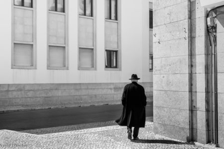 imagem destaque galeria Vasco Trancoso